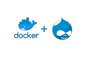 Docker logo (blue whale with containers on it's back). Typical container print was replaced with Drupal 8 logos.